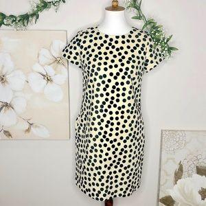 J. Crew | Cream Black Polkadot Sheath Dress Sz 2